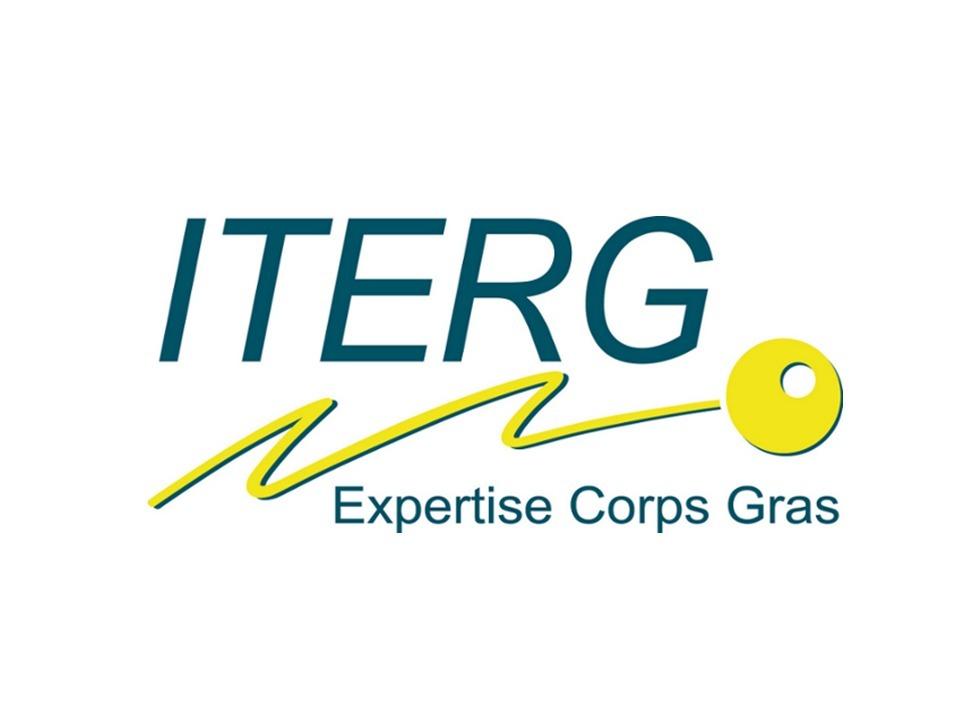 logo_iterg.jpg